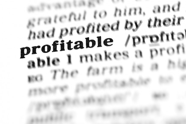profitable  (the dictionary project)