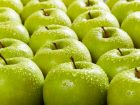 large group of granny smith apples in a row. Selective focus