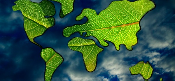 green economy and sustainable deveolpment, green leaves over continents