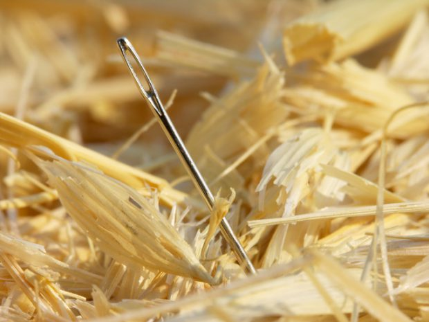 Close-up of a needle in a haystack.  Focus is on the eye of the needle.